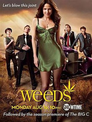 The cast of the sixth season of Weeds. Left to...
