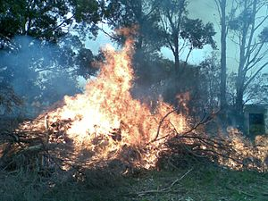 A burn-off for fire prevention