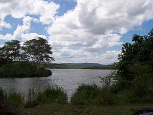 Luvuvhu and Limpopo rivers at Crookes Corner i...