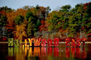 'Hollywood East' sign made out of fall leaves