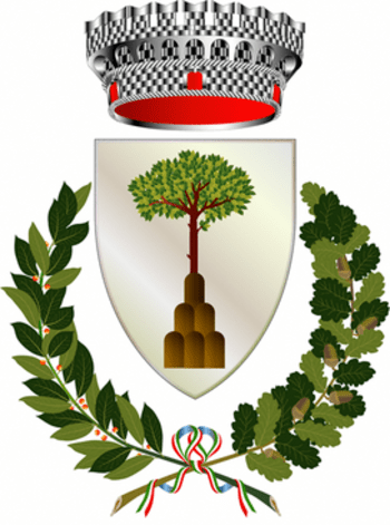 Coat of arms of Montalcino