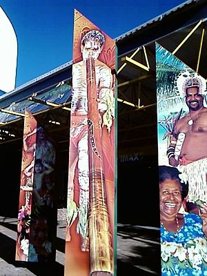 Townsville Aboriginal and Torres Strait Island...