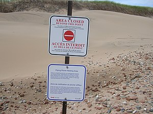 piping plover nesting area