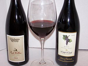 Two Washington State Rhône Rangers and a glass...