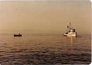 Souvenir 1981