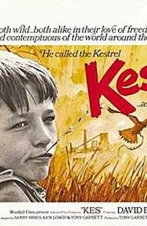 Kes (film)