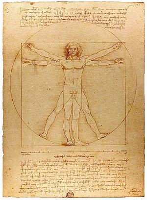 Vitruvian Man Leonardo Da Vinci