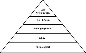ShannonOrr-Maslow