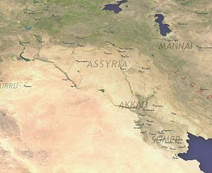 Cities of the ancient Near East