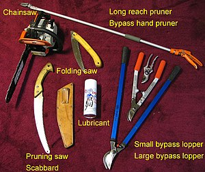 Some tools utilized for pruning.