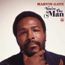 Resultado de imagen de Marvin Gaye - You're the Man