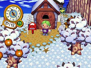A player's house during winter