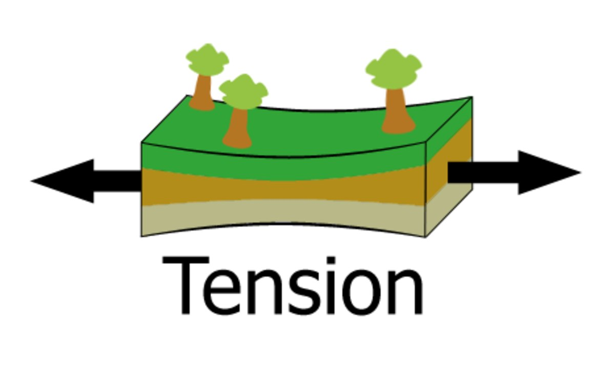 Example Tension Force Earth Freebodydiagramexamplejpg