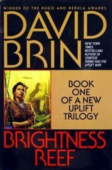 Image result for BRIGHTNESS REEF