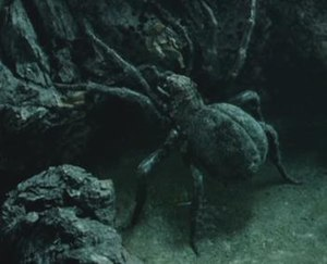 Shelob fights Sam Gamgee in Peter Jackson's fi...