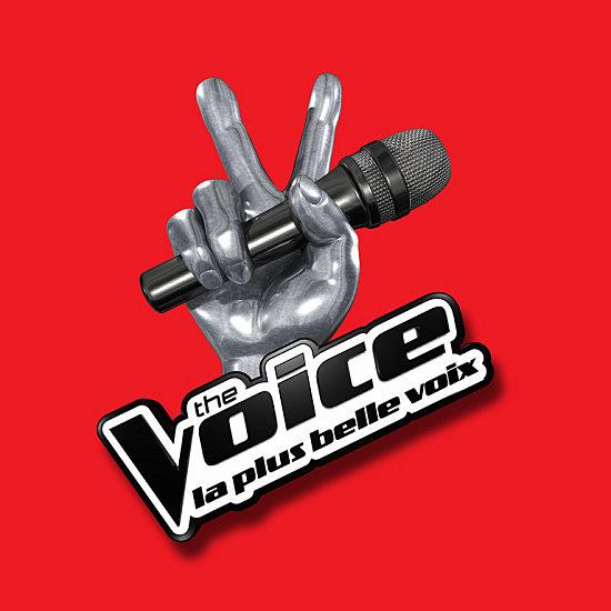 """Résultat de recherche d'images pour """"the voice france logo"""""""