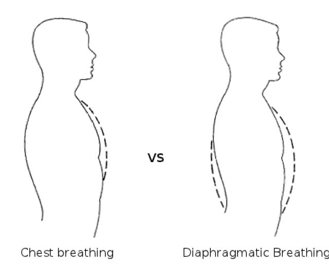 Diaphragmatic Breathing To Last Longer In Bed