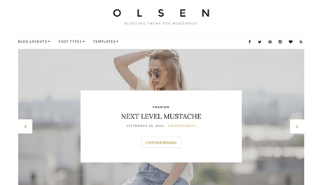 CSS Igniter Olsen WordPress Theme
