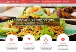 CyberChimps Cordon Bleu WordPress Theme