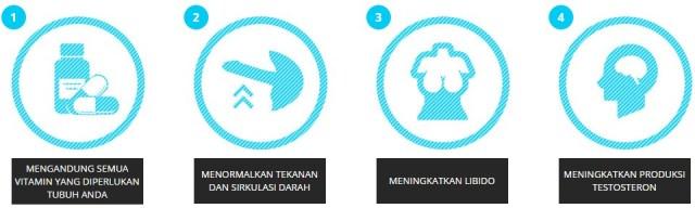 Jual Hammer Of Thor Obat Kuat Di Makassar