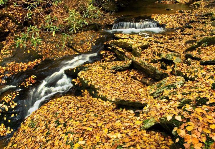 Mill Creek Falls, York County