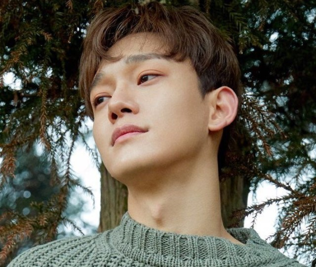 Chen Exo Profile And Facts Chens Ideal Type Updated