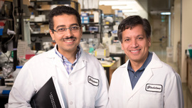 Scientists Create Heart Cells Better, Faster, Stronger | Gladstone Institutes