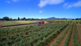 A San Francisco Startup Puts Everything You Need for a Two-Acre Farm in a Shipping Container