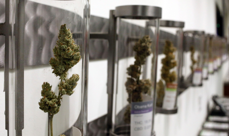 Oregon Patients May Lose MMJ Access To Rec Users