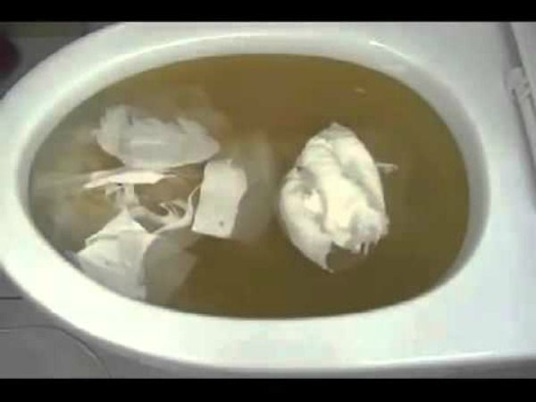 Image Result For How To Unclog A Toilet When The Bowl Is Full