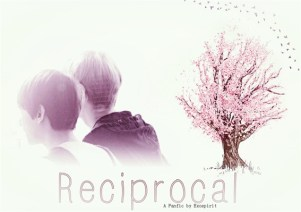 Fanfic / Fanfiction Reciprocal