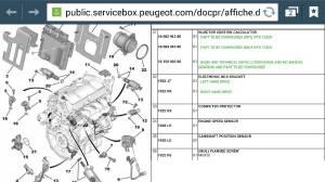 Peugeot 307 16 petrol how to change timing belt Peugeot Forums