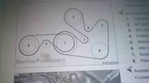 Serpentine fan belt routing?