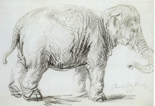 https://i1.wp.com/uploads1.wikipaintings.org/images/rembrandt/hansken-1637.jpg
