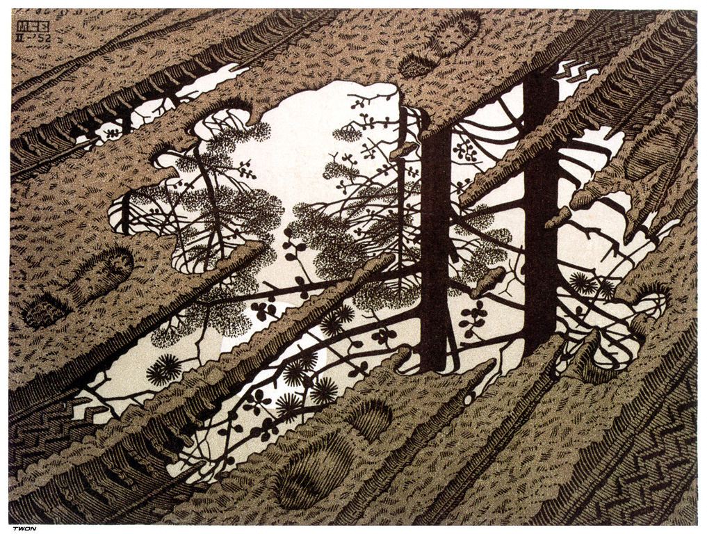 https://i1.wp.com/uploads5.wikipaintings.org/images/m-c-escher/puddle.jpg