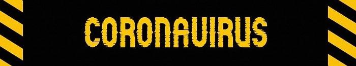 coronavirus-4906413_960_720 2