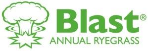 Blast Annual Ryegrass Logo with explosion