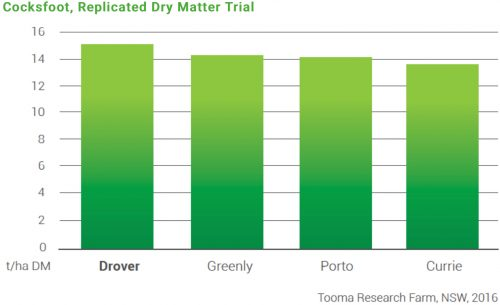 Replicated Dry Matter Trial