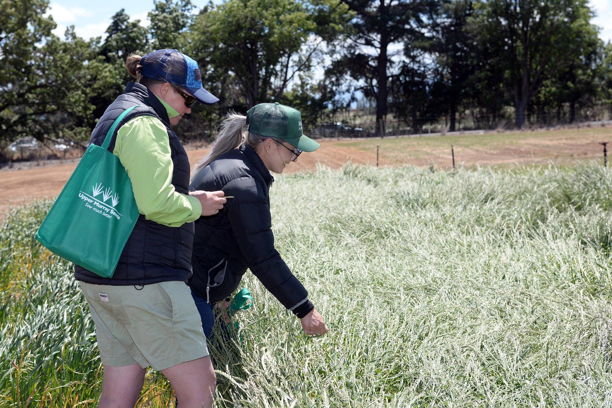 Two ladies looking at pastures