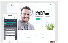 Blake   High-Grade MultiPurpose WordPress Theme - 1