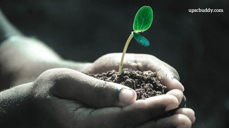 It leaves us presently equipped to tackle even the most extraordinary writing tasks. Essay On Afforestation For Students In English Easy Words