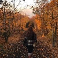 As maravilhas do Outono no Reino Unido