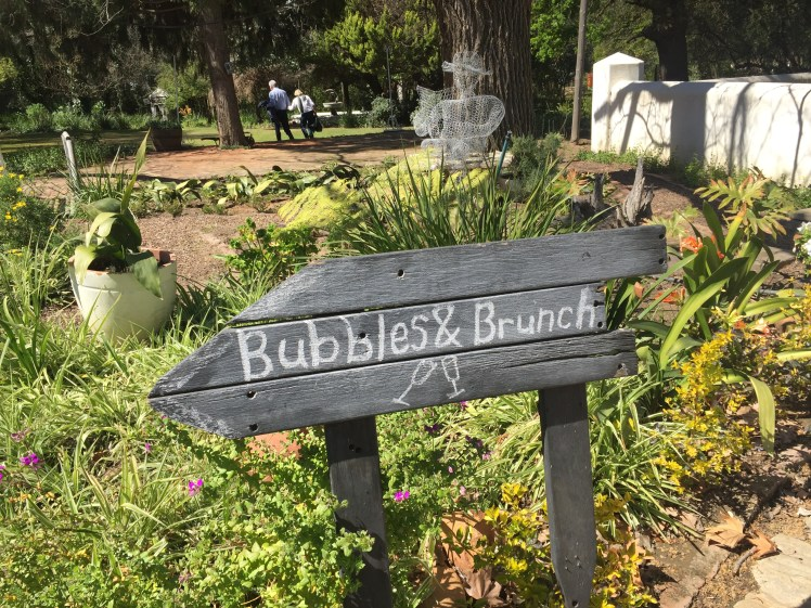 bach brunch and bubbles event at Montpellier de Tulbagh south africa