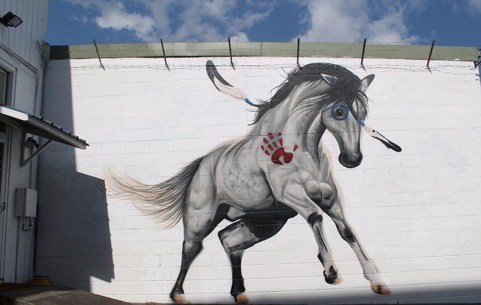 graffiato street art Taupo, Horse