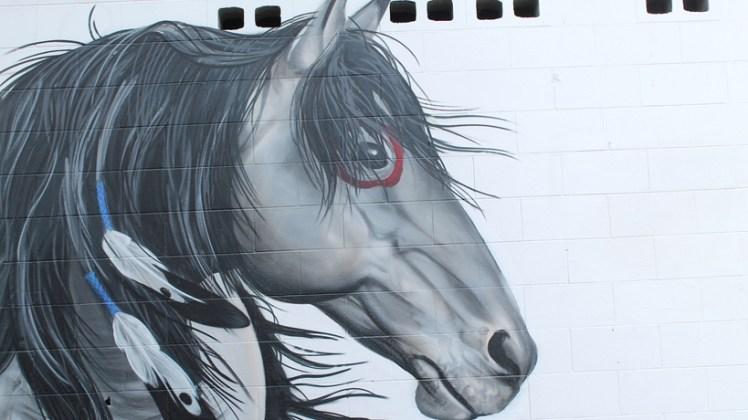 horse image at graffiato street art, Taupo