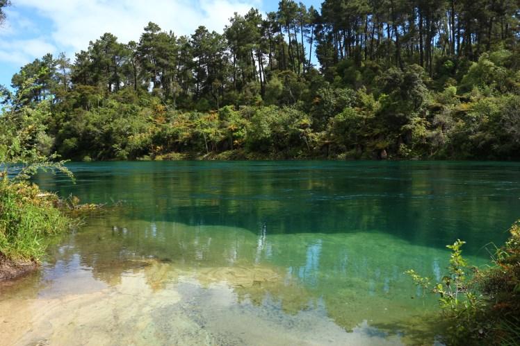Waikato River close up, hike near Taupo