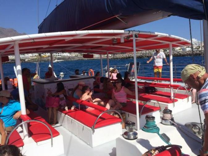 Tenerife Whale Cruise with Maxicat catamarans