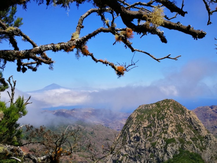 la gomera los roques panorama , cloud forest and teide