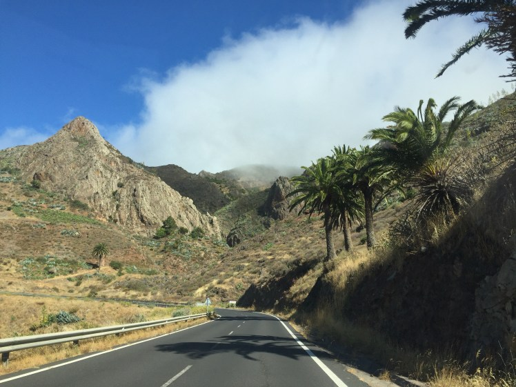 la gomera highway landscape palm trees and clouds