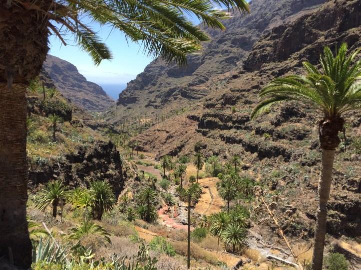 Seaview from hiking in Guarimiar , la gomera palm tree valley